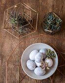 Bowl of Easter eggs and succulents in metal frames on wooden table
