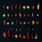 Various different chilli peppers on a black surface