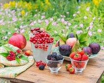 Obststillleben auf Gartentisch