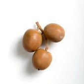 Three Spanish Albequina olives