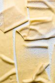 Fresh pasta sheets (seen from above)