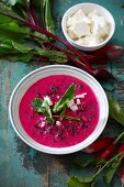 Cold soup with beetroot with goat's cheese