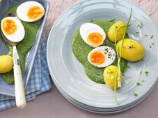 Soft-boiled eggs with spinach sauce and potatoes
