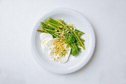 Green mini asparagus with mozzarella, pine nuts, lemon zest and fleur de sel