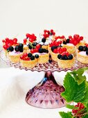 Mascarpone ice cream with red currants in mini pastry cases