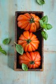 Oxheart tomatoes and basil in a wooden box