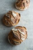 Boule au Levain (round sourdough loaves, France)