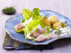 Smoked fillets of trout with boiled potatoes and horseradish yoghurt