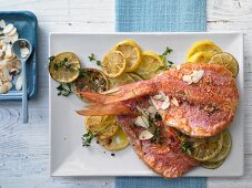 How to prepare pan-fried red mullet on a bed of caramelised citrus fruit slices