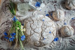 And unbaked loaf of bread and bread rolls withflower, water and ears of corn