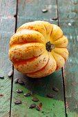 A Chameleon pumpkin