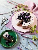 Cream cheese cake with blueberries, lavender and white chocolate