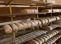 Assorted tin loaves cooling on wooden shelves in a bakery