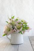 Bouquet of hellebores in enamel jug