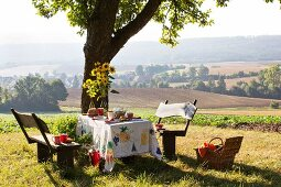 Bundt cake on table set for afternoon coffee under apple tree with view of landscape
