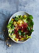 Celeriac salad with hazelnuts, lamb's lettuce and red cress (low carb)