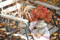 Rosehips and reeds in vases