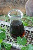 Mushroom stock in a glass carafe