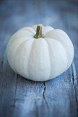 White pumpkin Baby Boo pumpkin