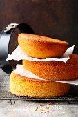 Vanilla sponge bases for multi-layered cakes