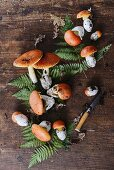 Fresh wild mushrooms with fern leaves on a wooden background