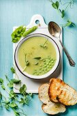 Light summer green pea cream soup in bowl with sprouts, bread toasts and spices