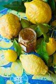 Ein Glas Zitronenmarmelade und frische Zitronen