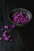 Vintage iron bowl of edible lilac flowers over black wooden background