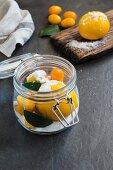 Salt lemon Meyer and kumquat