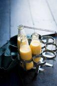 Creamy pumpkin smoothie in bottles