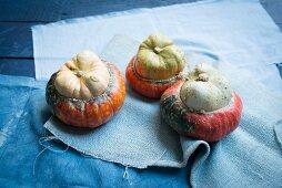 Three Turk's Turban pumpkins