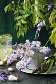 Wisteria in a pot with green asparagus and mushrooms