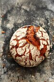 'Frankenlaib', a classic bread from the Franken region of Bavaria with spices