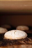 Rye-wheat bread starting to bake in the oven