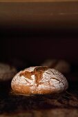 Rye-wheat bread in the oven - the volume and crust are well developed