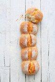 A row of Swiss crusty bread rolls