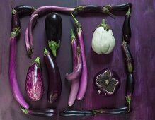 An artistic eggplant picture frame