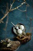 Spruce sorbet in a bowl