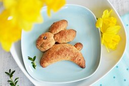 A yeast bread Easter bunny with daffodils and beech sprigs