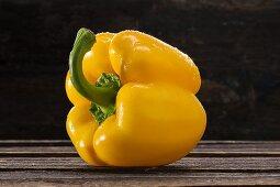 Gelbe Paprikaschote mit Wassertropfen