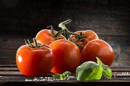Tomatenrispe mit Wassertropfen