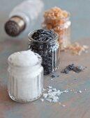 Black salt, paprika salt and sea salt flakes in glasses