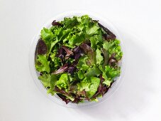 Fresh mixed lettuce leaves in a plastic bowl in front of a white background (seen from above)