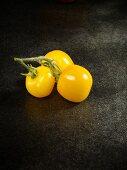 Three yellow Golden Queen tomatoes