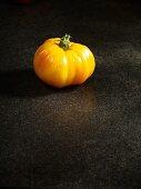 A yellow Oxana Jewel tomato