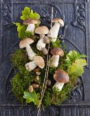 An Autumn still life with stone mushrooms