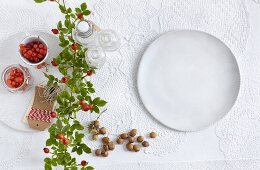 Rose hips and a white plate on top of a lace tablecloth