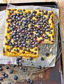 Quark and blueberry cheesecake without a base