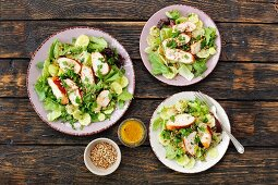 Roast chicken salad with lettuce and cucumber