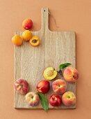 Pfirsiche, Nektarinen und Aprikosen auf Holzbrett